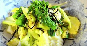 《ごごナマ》春キャベツ×菜の花 塩昆布漬け(杉山文)